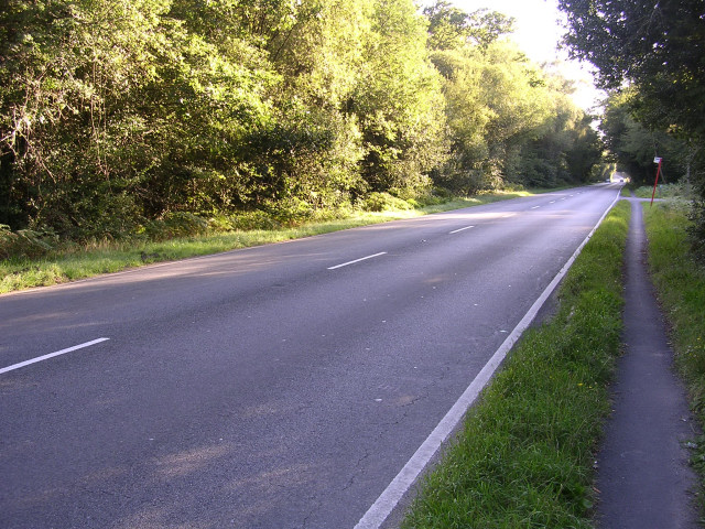 The A35 at Lodgehill Cottage, New Forest