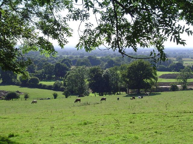 Britcher Farm