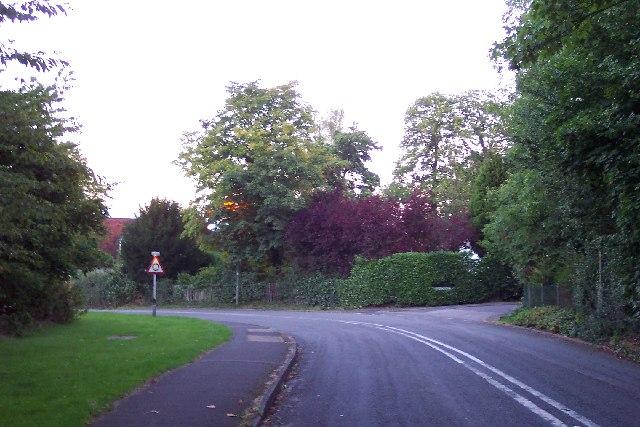 Beech Hill, near Mayford
