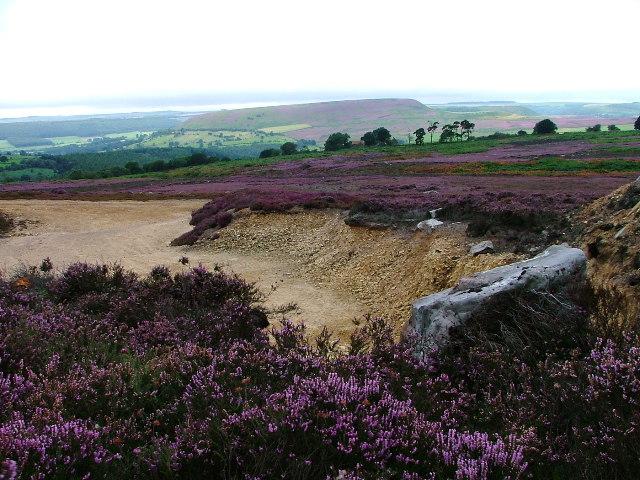 Laskill Pasture Moor