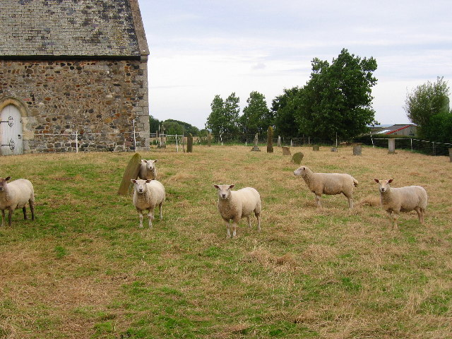 All Saints Parish Church - Grass Management Team