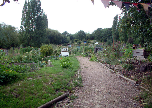 One Tree Hill Allotments SE23