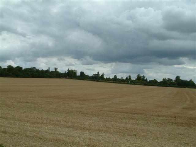 Newnham Farm