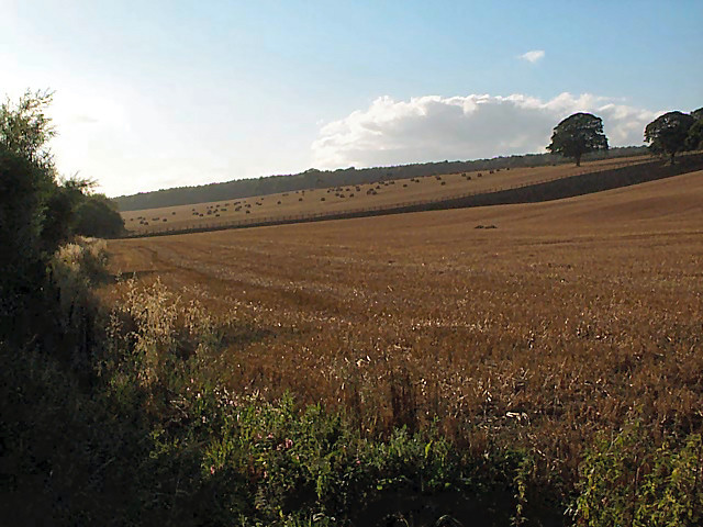 Stubble and straw bales east of Otley