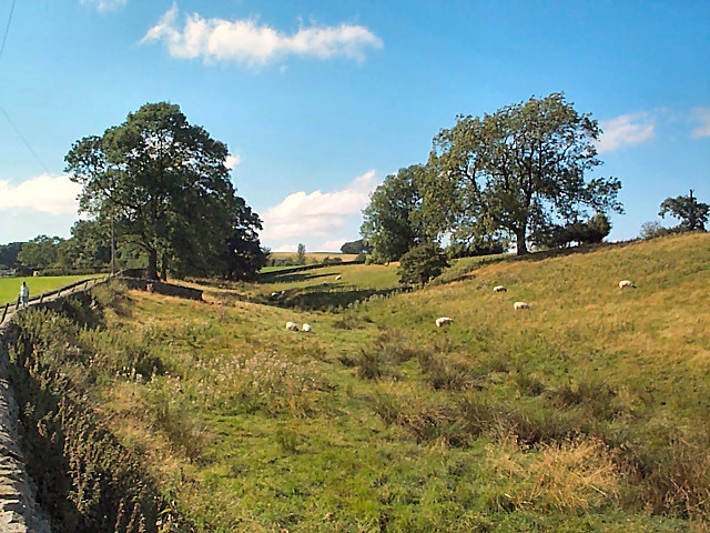 Small valley near Haddockstones Farm
