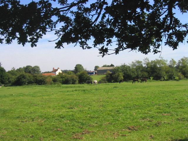 Horse Pasture, Navestock Heath, Essex