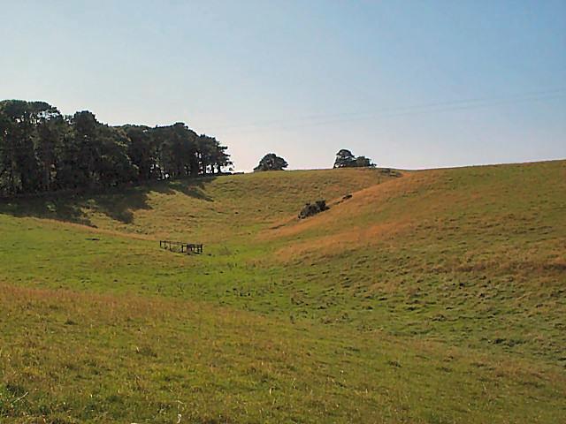 Dry valley between Haddockstones Farm and Crag Farm
