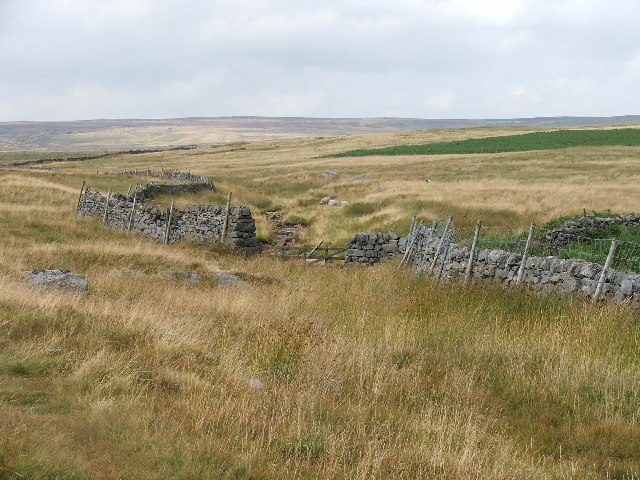 Gate at top of Blea Gill
