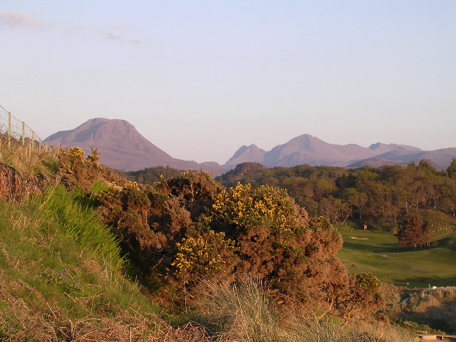 Gairloch gorse bush and golf course