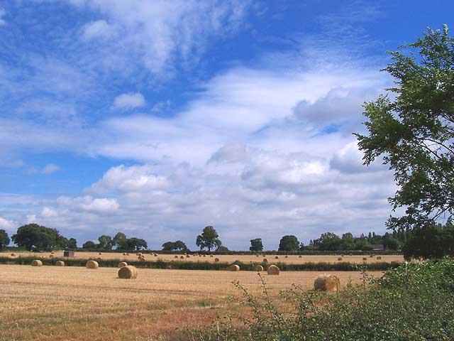 Harvest time on Trowell Moor