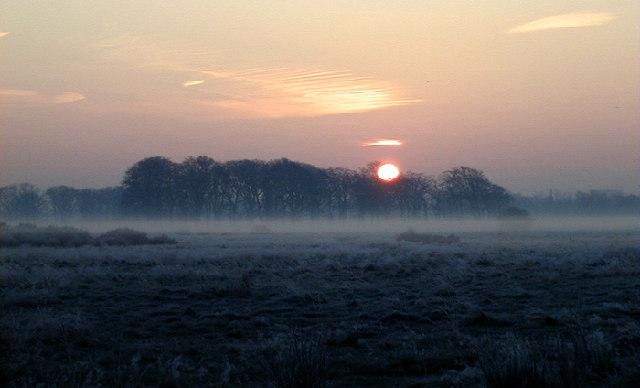 Dawn at Wanstead Flats