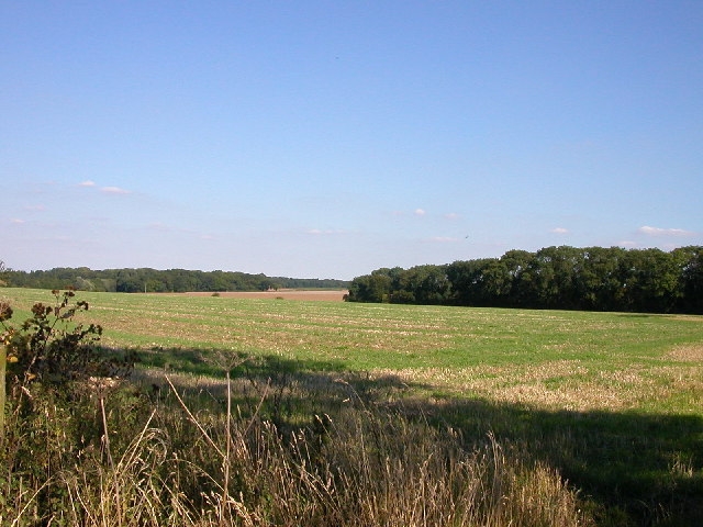 Cawston Farmland