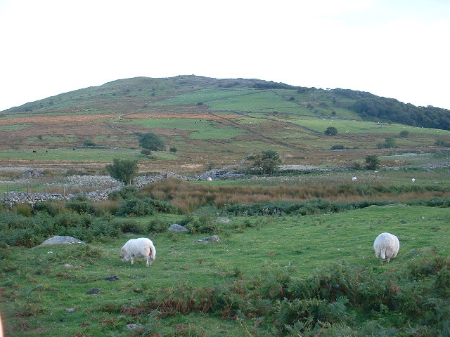 Farmland below Craig y Gesail