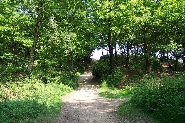 Holmbury hillfort
