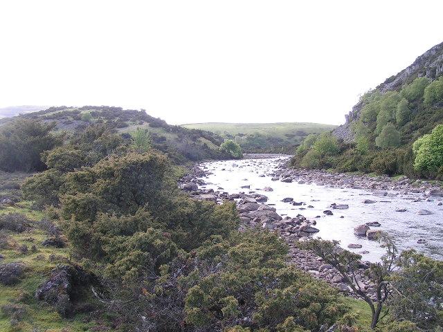 River Tees, Dine Holm Scar