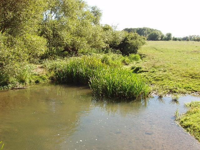 River Thame at Notley