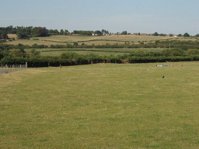 Fields near Notley Abbey