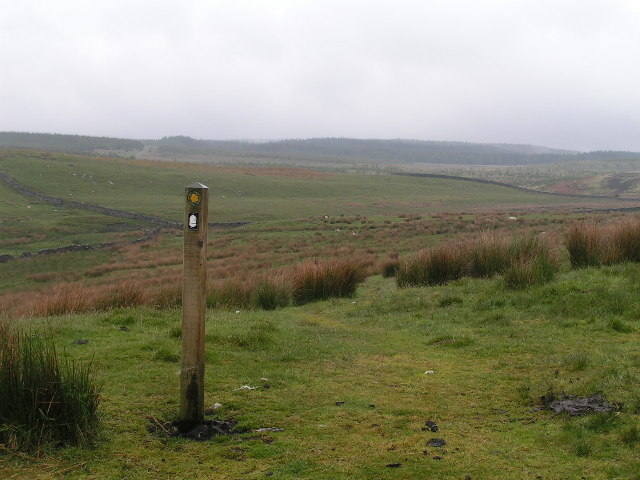 Pennine Way near Wark Forest