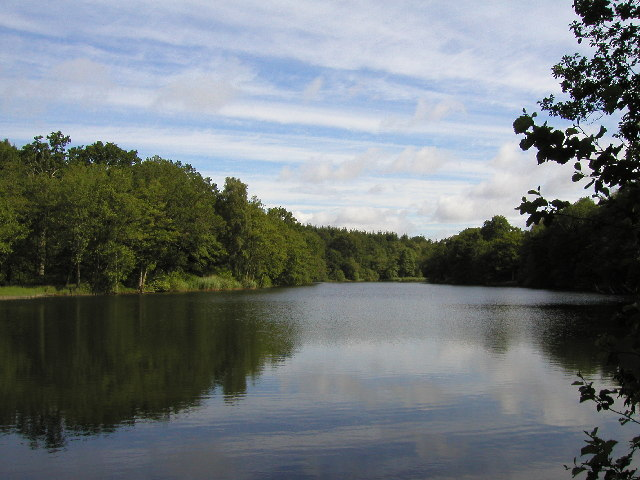 Cannop Pond
