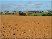 SP8278 : Farmland NE of Loddington by John Stolarski