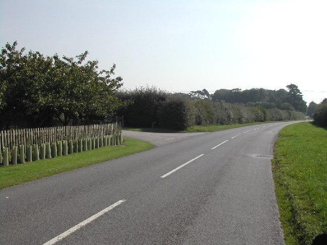 Tenman Lane, Car Colston