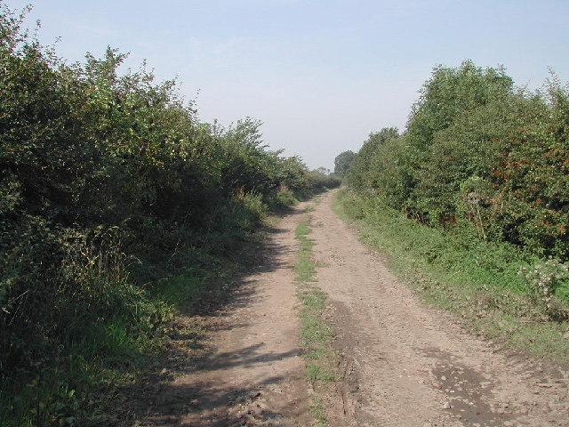 Closes Side Lane