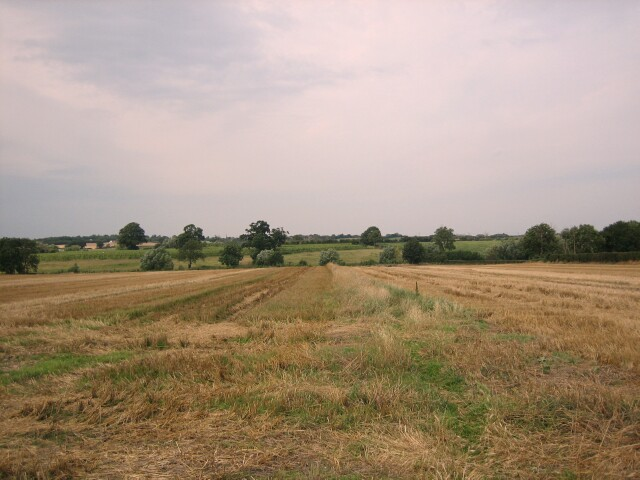 Fields near Pershore Hall