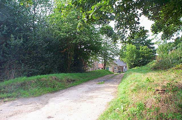 Willey Wood Farm