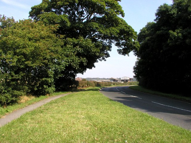 The road to Flamborough