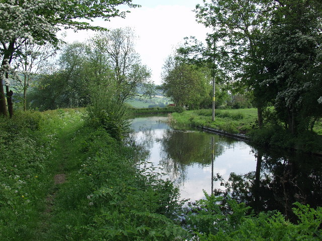 Montgomery Canal near Pool Quay