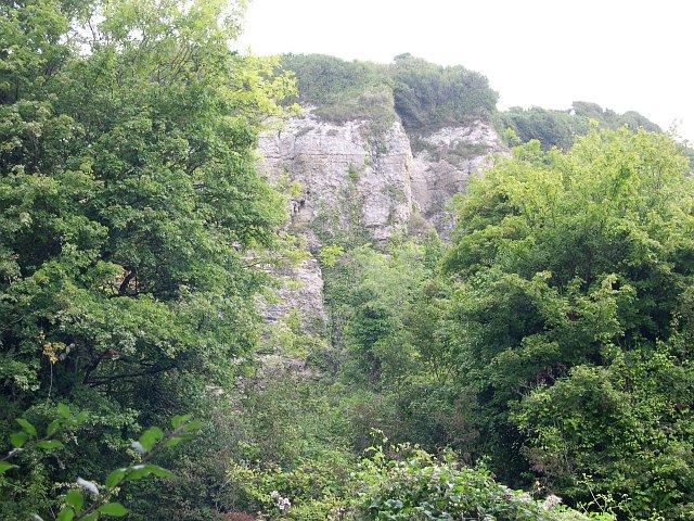Bindon Cliffs