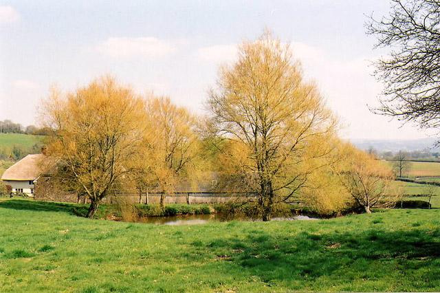 Cullompton: Ponsford