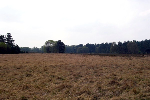 Rushford Heath, Suffolk