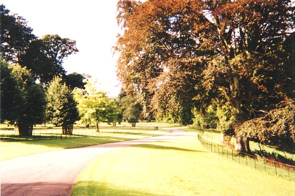 The approach to Knightshayes Court