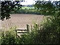 SP8802 : Ploughed field near Gt Missenden by Pip Rolls