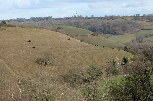 View of Coombe Hill