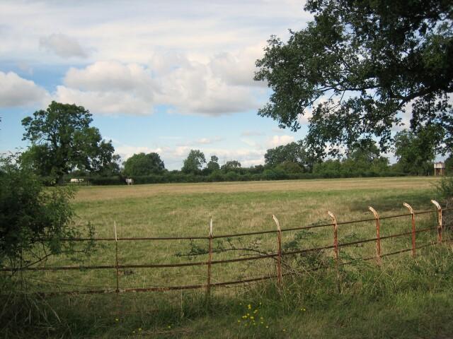 Pasture at Naunton Beauchamp