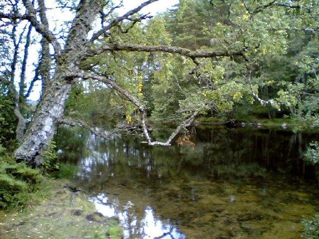 Loch Achilty