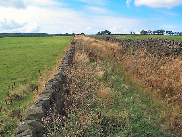Grass Road near West Morton