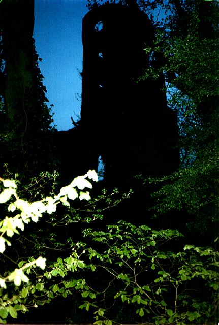 Racton Ruins, Sussex