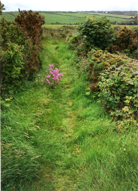 Trevellas foot and bridle path, St Agnes