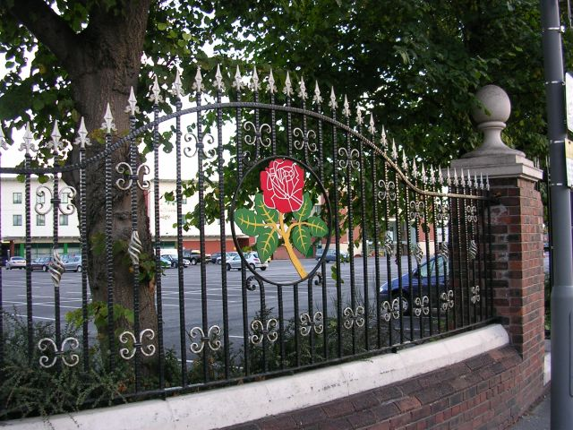 Red Rose of Lancashire