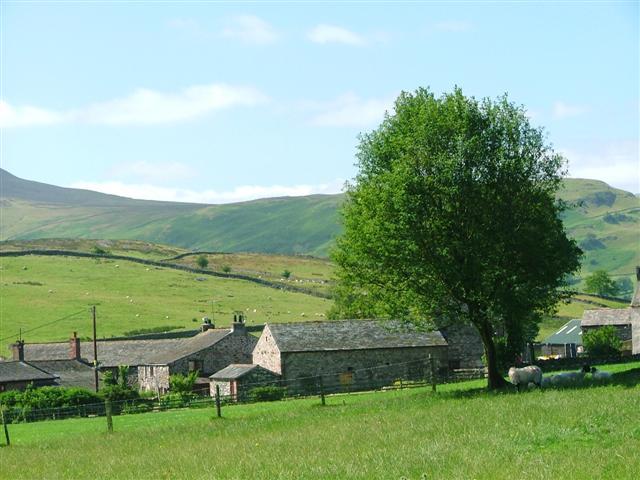 Burns Farm