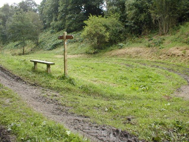 Path Junction, Ash Dale