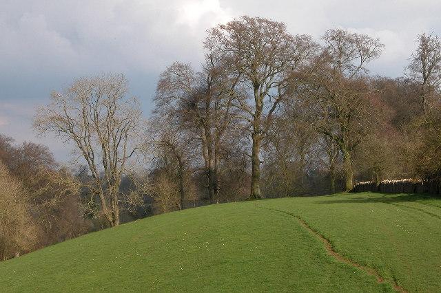 Bridleway near Quenington