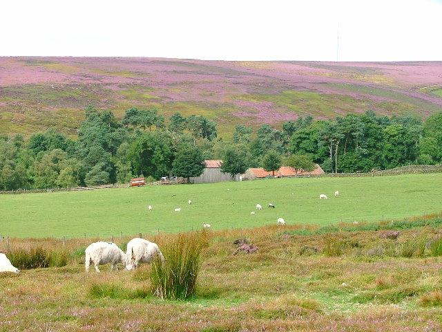 Bonfield Ghyll Farm