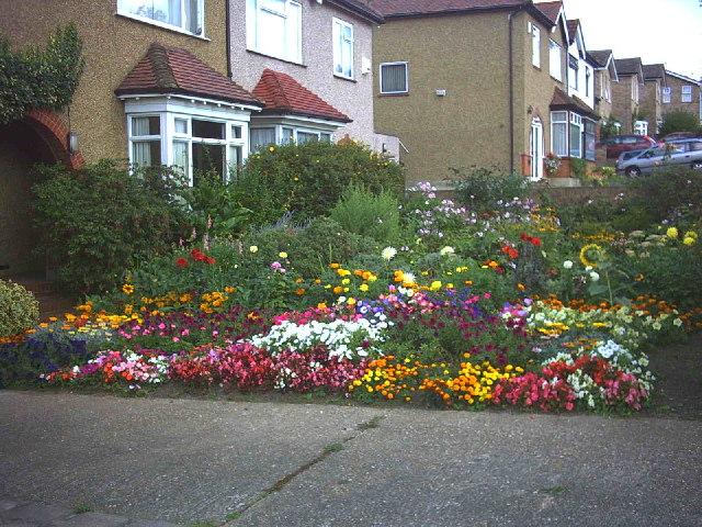 Colourful garden, Aultone Way, Sutton.