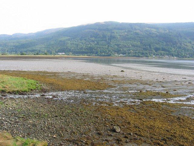 Mudflats, Holy Loch
