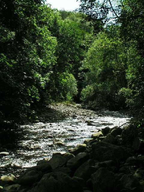 River Bleng