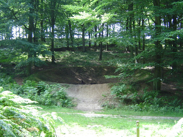Bomb Crater in Kings Wood